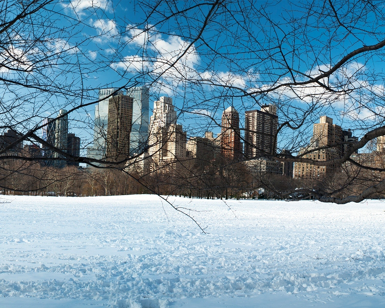 Sheep Meadow (Pastura de Ovejas)